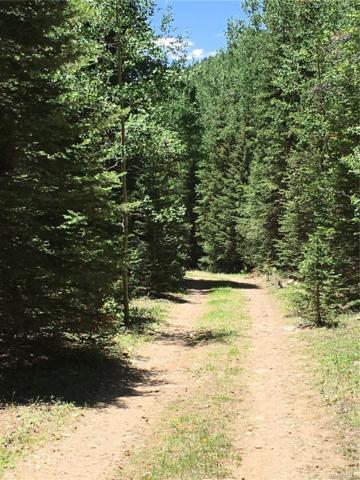 0 Silver Creek Road, Black Hawk, CO 80422 (MLS #6201745) :: 8z Real Estate