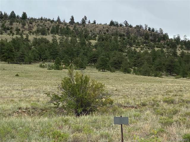 000 Sequin Road, Hartsel, CO 80449 (#6204064) :: Hudson Stonegate Team