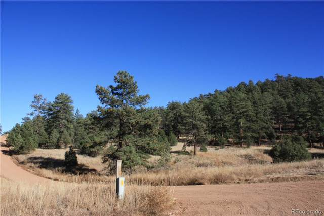 262 Harmon Drive, Cotopaxi, CO 81223 (#6207032) :: The DeGrood Team