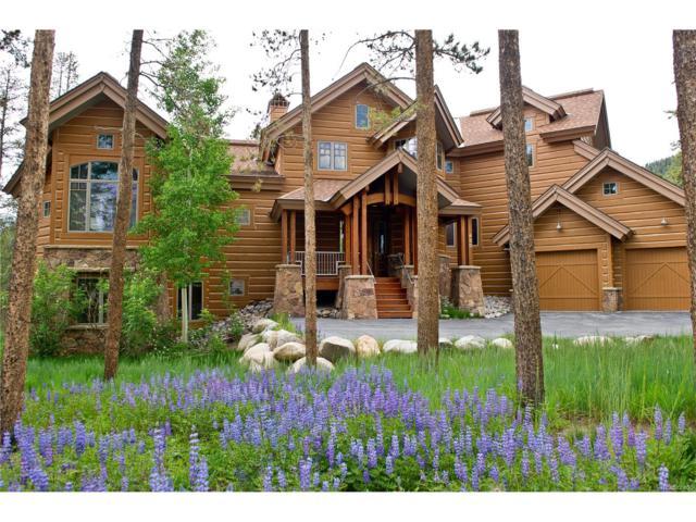 450 Elk Circle, Dillon, CO 80435 (MLS #6207239) :: 8z Real Estate