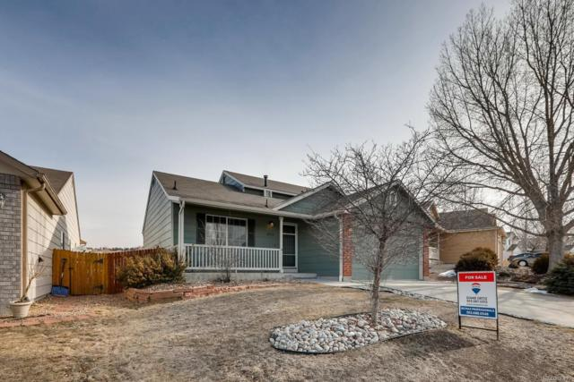 3653 Rawhide Circle, Castle Rock, CO 80104 (MLS #6243308) :: Kittle Real Estate