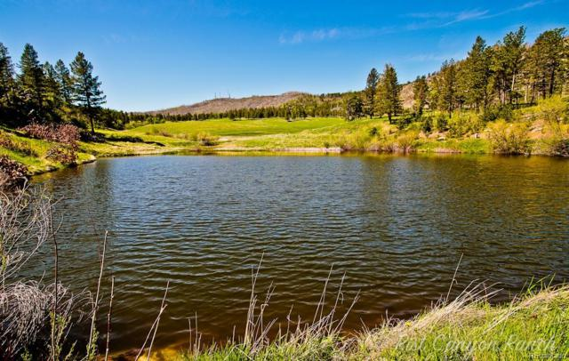 14884 Rist Canyon Road, Bellvue, CO 80512 (MLS #6249240) :: 8z Real Estate