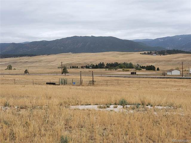 10686 S Spruce Mountain Road, Larkspur, CO 80118 (#6263687) :: iHomes Colorado