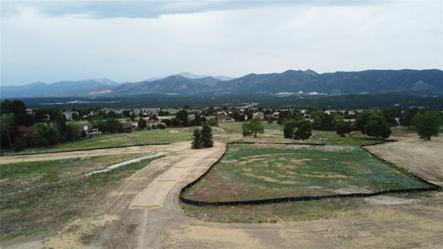 351 Silver Rock Place, Colorado Springs, CO 80921 (#6293209) :: Structure CO Group