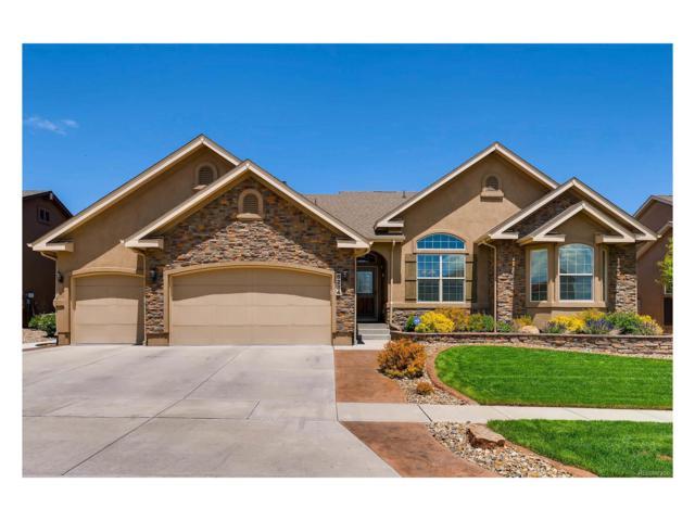 6284 Revelstoke Drive, Colorado Springs, CO 80924 (MLS #6301265) :: 8z Real Estate