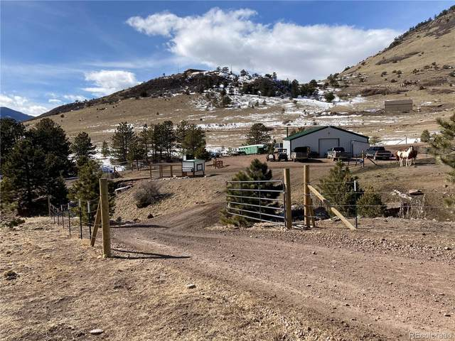 6582 Autumn Creek Drive, Canon City, CO 81212 (#6313101) :: Hudson Stonegate Team