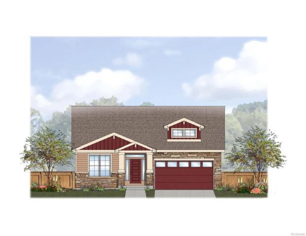 1250 Elysian Field Dr Drive, Lafayette, CO 80026 (#6344152) :: Wisdom Real Estate
