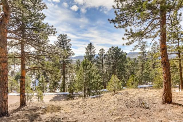 29033 Wild Rose Drive, Evergreen, CO 80439 (#6347927) :: The Heyl Group at Keller Williams