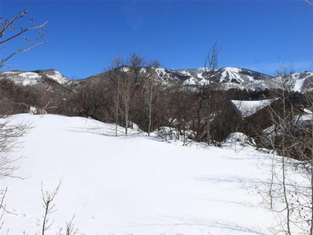 505 Steamboat Boulevard, Steamboat Springs, CO 80487 (#6349457) :: The Pete Cook Home Group