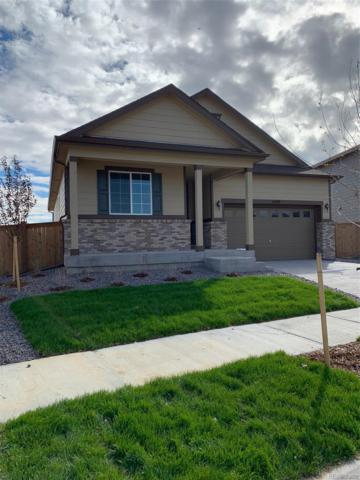 4470 E 96th Place, Thornton, CO 80229 (MLS #6356741) :: 8z Real Estate