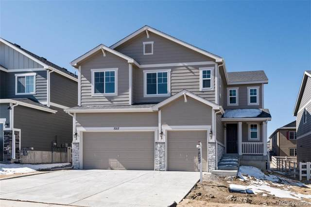 5217 Ditmars Lane, Castle Rock, CO 80104 (#6371162) :: Sultan Newman Group
