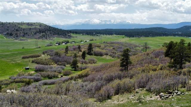 4874 Best Road, Larkspur, CO 80118 (#6376575) :: Stephanie Fryncko | Keller Williams Integrity
