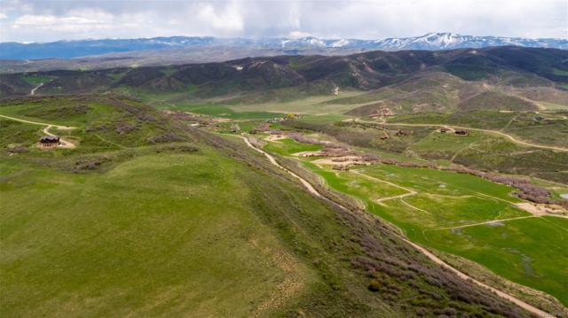 33080 Vista Ridge Drive, Oak Creek, CO 80467 (MLS #6376762) :: 8z Real Estate
