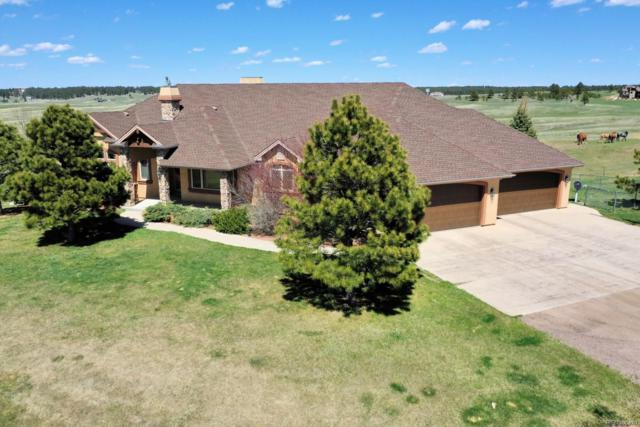 8555 Rope Horse Point, Colorado Springs, CO 80908 (#6422313) :: Harling Real Estate