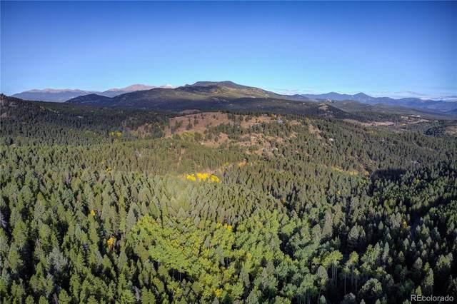 13500 Powhatan Trail, Conifer, CO 80433 (#6468500) :: Sultan Newman Group