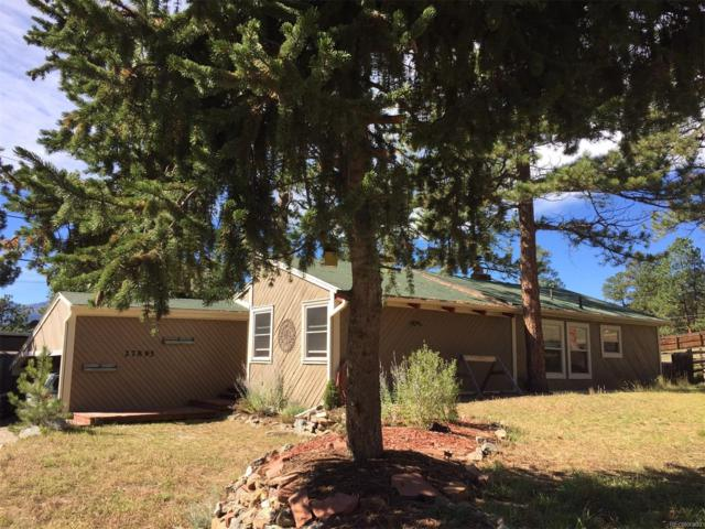 27895 Pine Drive, Evergreen, CO 80439 (#6483457) :: The City and Mountains Group