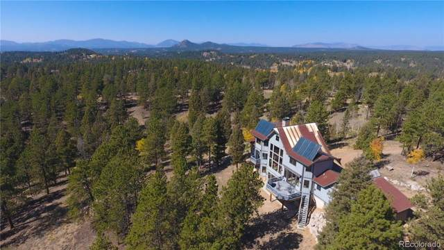 4273 Cedar Mountain Road, Divide, CO 80814 (#6520878) :: The DeGrood Team