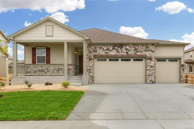 15571 Quince Street, Thornton, CO 80602 (MLS #6527030) :: 8z Real Estate