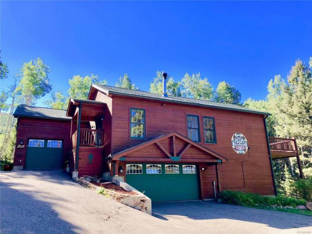 25248 Red Cloud Drive, Conifer, CO 80433 (#6557371) :: HomePopper