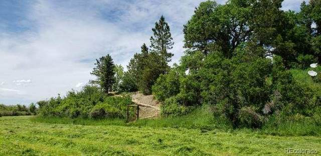 00 County Road 39, Elbert, CO 80106 (MLS #6558266) :: 8z Real Estate
