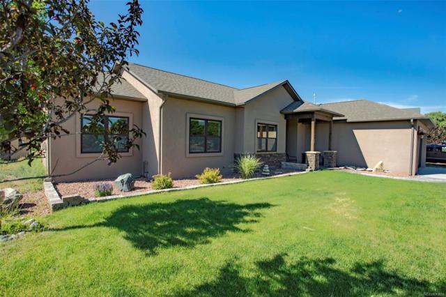 1105 E Sabeta Avenue, Poncha Springs, CO 81242 (MLS #6558552) :: Bliss Realty Group