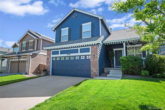 9696 Sun Meadow Street, Highlands Ranch, CO 80129 (#6560261) :: HomeSmart Realty Group
