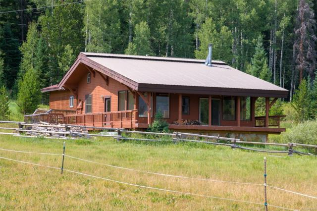 23353 County Road 62, Clark, CO 80428 (MLS #6569415) :: 8z Real Estate