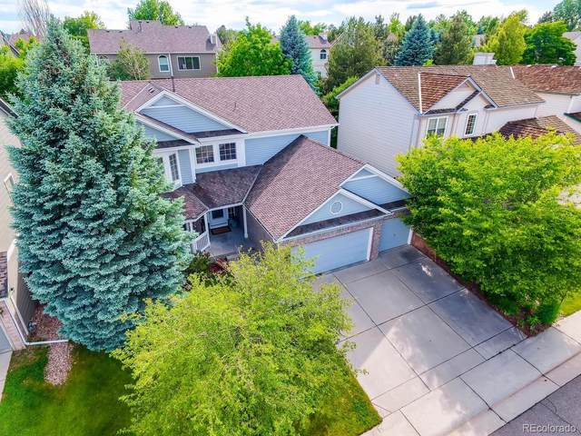 9730 Cypress Point Circle, Lone Tree, CO 80124 (#6570536) :: The DeGrood Team