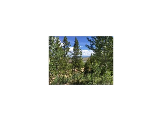 417 County Road 897 Aka Deer Trail, Grand Lake, CO 80447 (#6571723) :: Hometrackr Denver