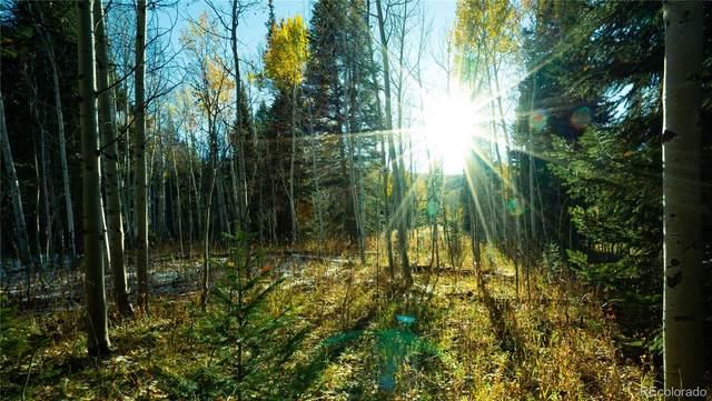 20430 King Bolt Trail, Oak Creek, CO 80467 (#6578764) :: The Dixon Group