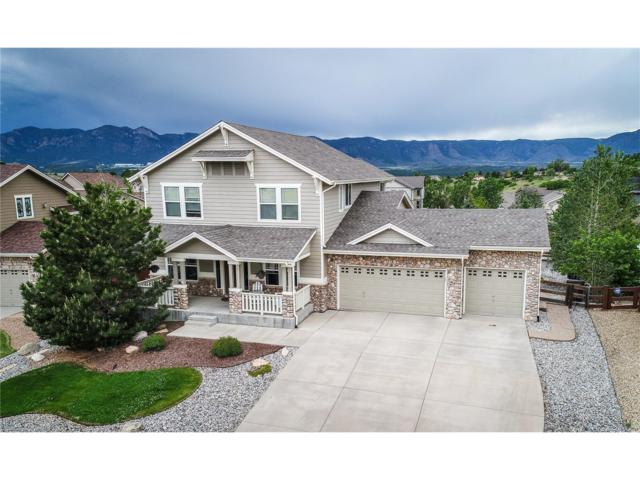 13860 Antelope Pass Place, Colorado Springs, CO 80921 (MLS #6579478) :: 8z Real Estate