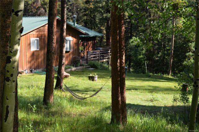 28902 Shadow Mountain Drive, Conifer, CO 80433 (#6589988) :: Bring Home Denver