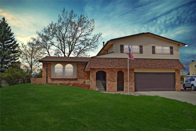 6094 S Lamar Drive, Littleton, CO 80123 (#6632190) :: Wisdom Real Estate