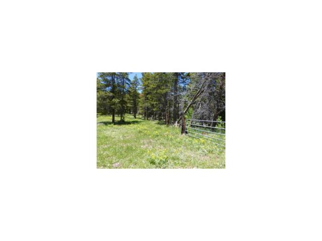 000 Gooseberry Trail, Littleton, CO 80127 (MLS #6638639) :: 8z Real Estate