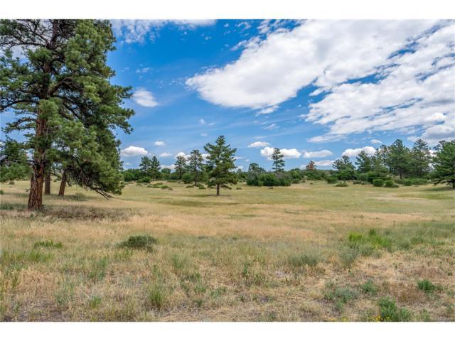7875 Lost Lake Drive, Franktown, CO 80116 (MLS #6645488) :: 8z Real Estate