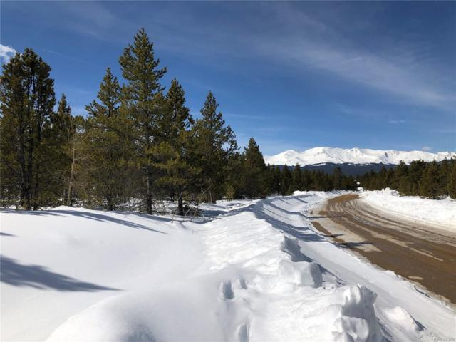 735 Alpine Cirque, Leadville, CO 80461 (#6658522) :: The Heyl Group at Keller Williams