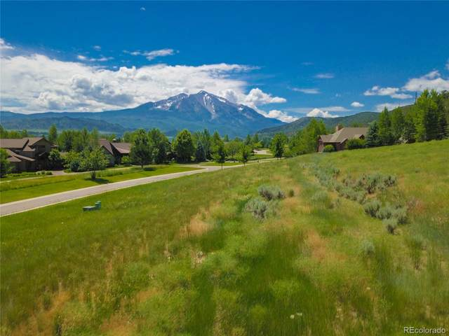 741 Perry Ridge Road, Carbondale, CO 81623 (#6676628) :: The DeGrood Team