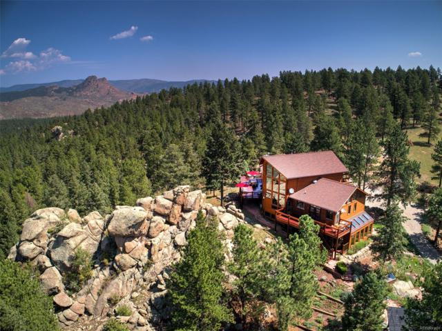 20113 Spring Creek Trail, Buffalo Creek, CO 80425 (#6681762) :: Wisdom Real Estate