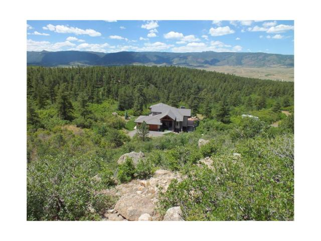5088 S Perry Park Road, Sedalia, CO 80135 (MLS #6693448) :: 8z Real Estate