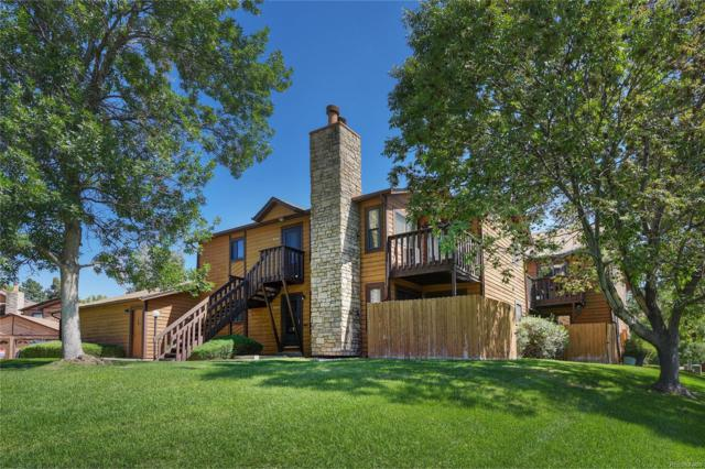 9044 W 88th Circle, Westminster, CO 80021 (MLS #6702453) :: 8z Real Estate