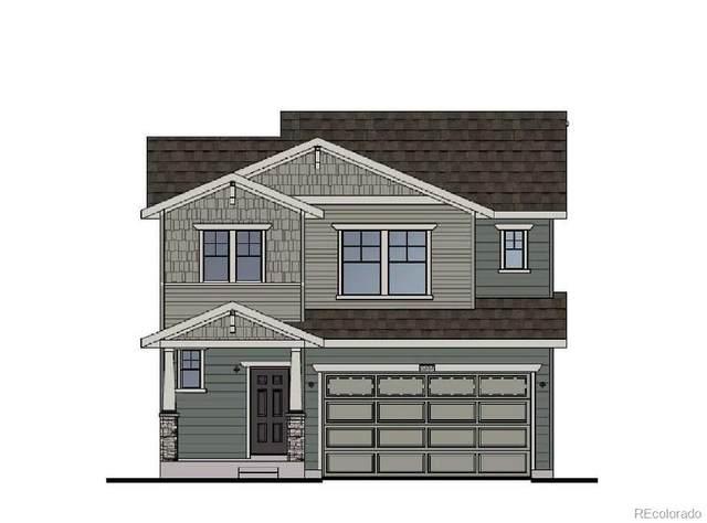 9795 Mount Kataka Point, Littleton, CO 80125 (#6702483) :: Bring Home Denver with Keller Williams Downtown Realty LLC