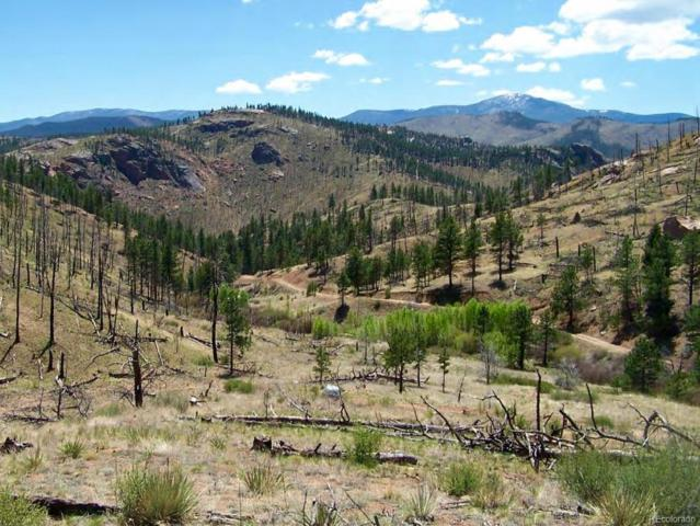 Cochise Trail, Pine, CO 80470 (#6709844) :: The DeGrood Team