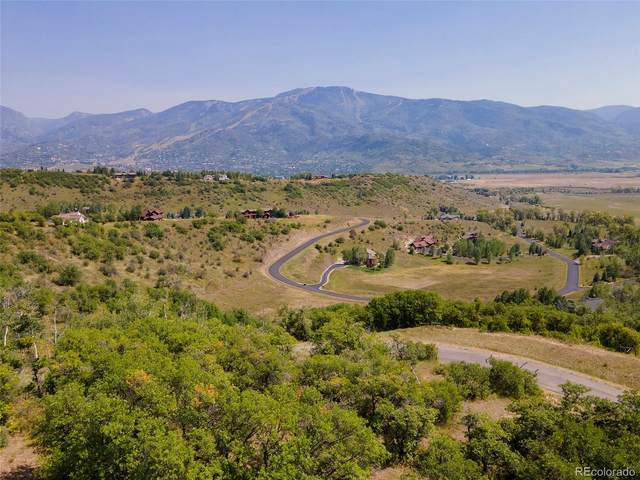 35575 Humble Road, Steamboat Springs, CO 80487 (#6727971) :: Venterra Real Estate LLC