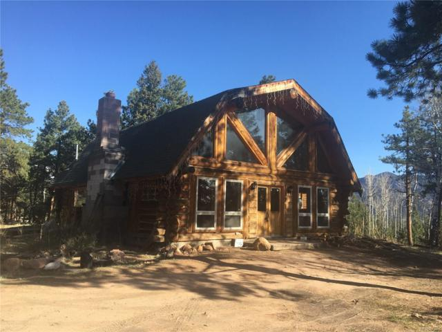 669 Mt Evans Boulevard, Pine, CO 80470 (MLS #6743639) :: 8z Real Estate