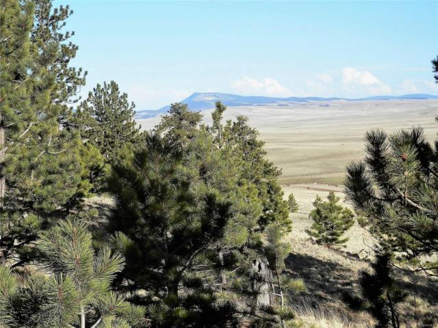 425 Forge Road, Hartsel, CO 80449 (#6748503) :: The Griffith Home Team