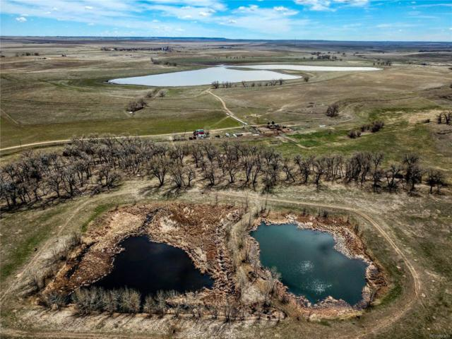 38250 County Road 170, Agate, CO 80101 (MLS #6759810) :: 8z Real Estate