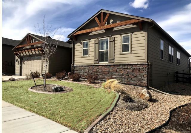 14615 Saddlebred Avenue, Parker, CO 80134 (#6760933) :: The Heyl Group at Keller Williams