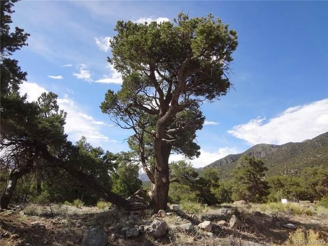 3557 Double Tree Ol, Crestone, CO 81131 (#6762006) :: Wisdom Real Estate