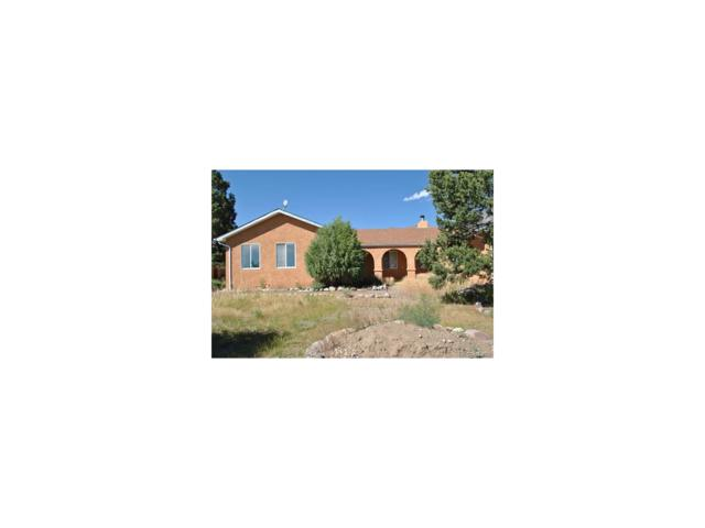 1564 Wagon Wheel Road, Crestone, CO 81131 (MLS #6767873) :: 8z Real Estate
