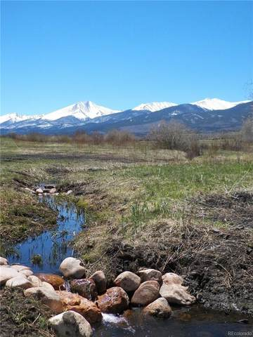 191 Two Creeks, Cotopaxi, CO 81223 (#6780572) :: Bring Home Denver with Keller Williams Downtown Realty LLC
